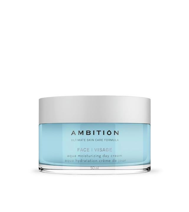 Hydratační denní krém Aqua Ambition, 50 ml (8990433) + DÁREK ZDARMA