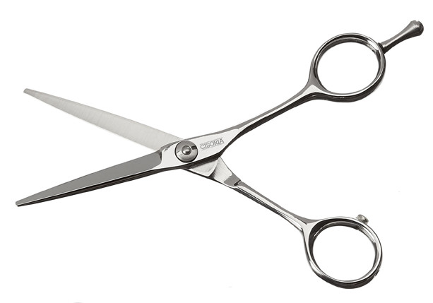 "Kadeřnické nůžky Sibel Cisoria Class S50 5"" stříbrné (7098050) + DÁREK ZDARMA"