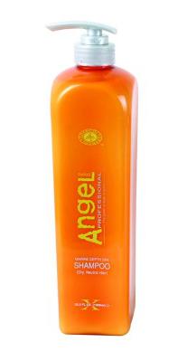 Angel Šampón pro normální, suché vlasy - 1000 ml (A-201-3) - DANCOLY Paris + DÁREK ZDARMA