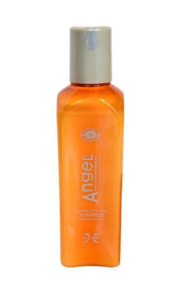 Angel Šampón pro normální, suché vlasy - 100 ml, expirace - DANCOLY Paris