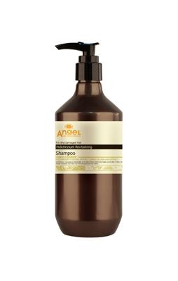 Angel Provence Šampón pro suché, poškozené vlasy - 400 ml (PL-01-1) - DANCOLY Paris + DÁREK ZDARMA