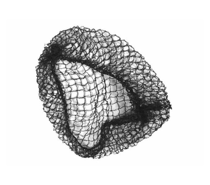 Síťka na vlasy s gumičkou Duko 4200 - černá