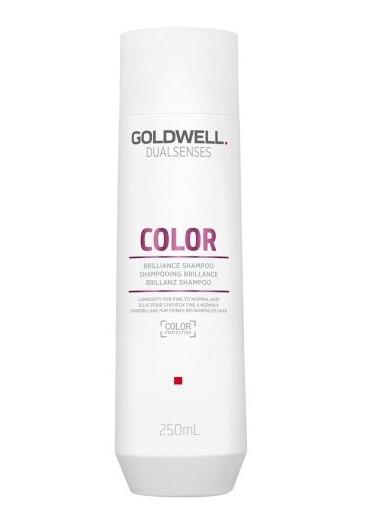 Šampon pro zvýraznění barvy Goldwell DS Color - 250 ml (202900)