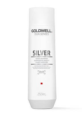 Šampon pro blond a šedivé vlasy Goldwell DS Silver - 250 ml (202915) + DÁREK ZDARMA